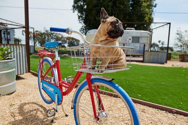 酒店提供自行車。(官網圖片)