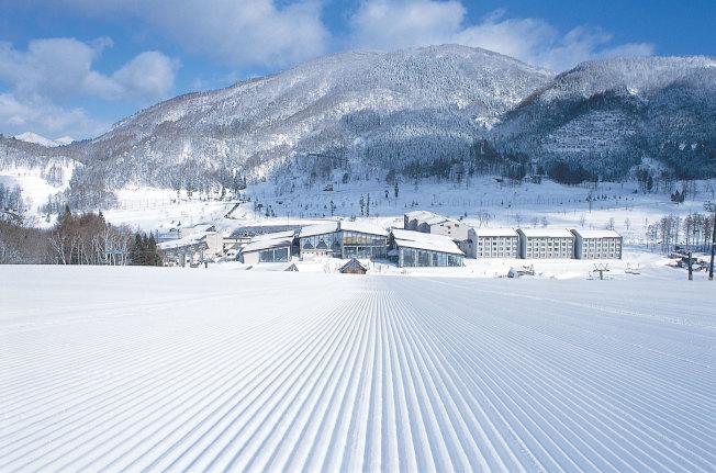 班尾高原滑雪場規畫有地形豐富的15條滑道。(圖:高豐旅行社提供)