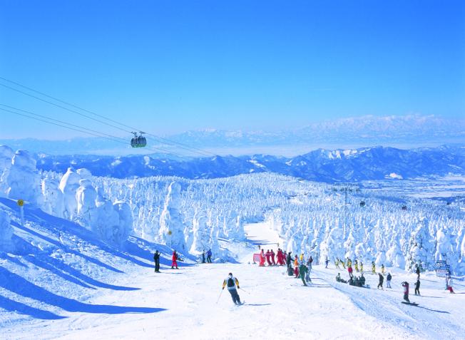藏王滑雪場知名度極高。(圖:雄獅旅遊提供)