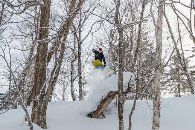 夕張滑雪度假村有樹林區、Park區等不同的玩法。(圖:夕張滑雪度假村提供)