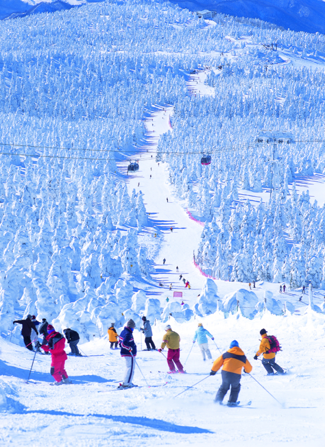 日本、南韓10優質滑雪場 人氣夯