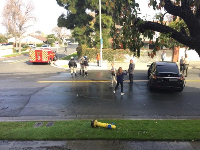 消防栓倒在路邊。(讀者提供)