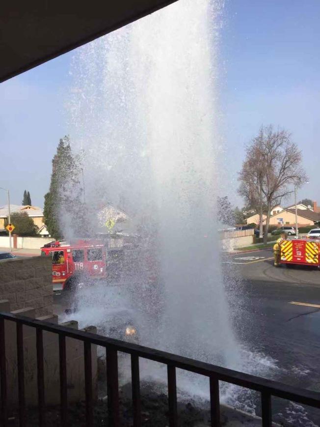 一輛汽車衝向路邊,撞壞了路邊的消防栓,導致水柱沖天。(讀者提供)