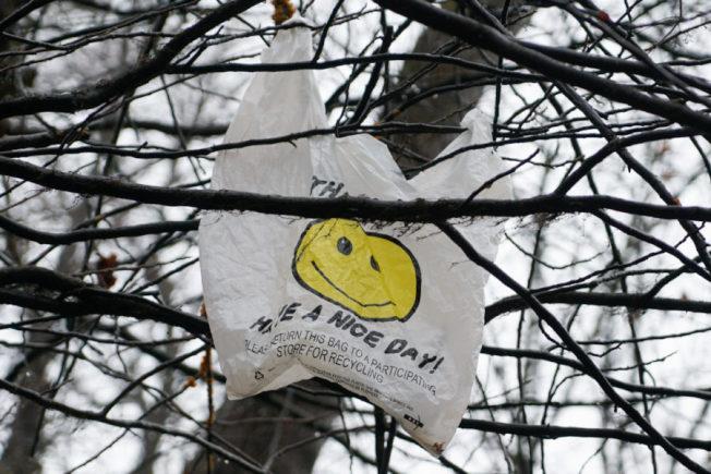 馬州立法者近日提案禁止商家提供塑膠袋,維州則提議對塑膠袋收費。(取自WAMU)