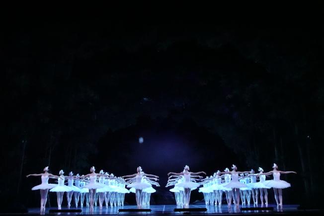 上海芭蕾舞團經典版芭蕾舞劇「天鵝湖」將在林肯中心上演。(記者金春香/攝影)