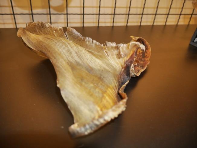 海大環境生物與漁業科學學系教授莊守正說,根據營養學的研究,吃魚翅的營養不如吃一顆白煮蛋。記者吳淑君/攝影