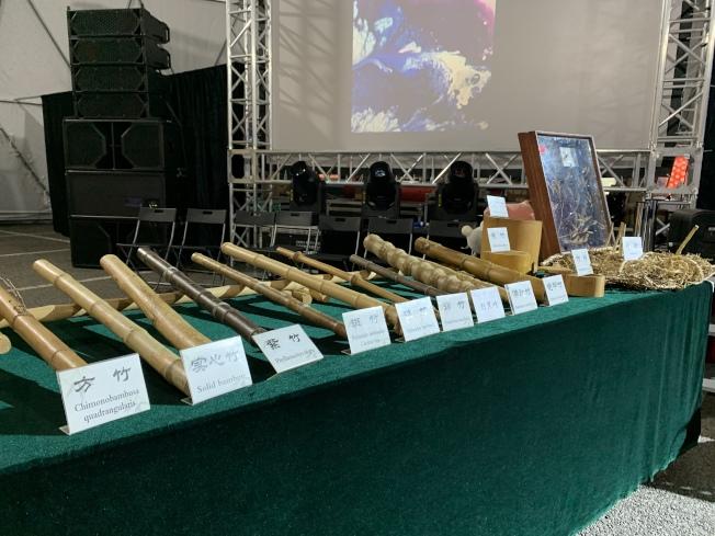 北京竹樂團當晚展示各樣竹子種類,宣導保護自然環境的重要性。(記者賴蕙榆/攝影)