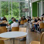 留學生OPT職位 須與所學相關