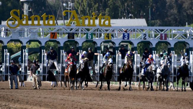 勝他跑馬場連續三天死了三匹馬,引發各界關注。(NBC/Getty)