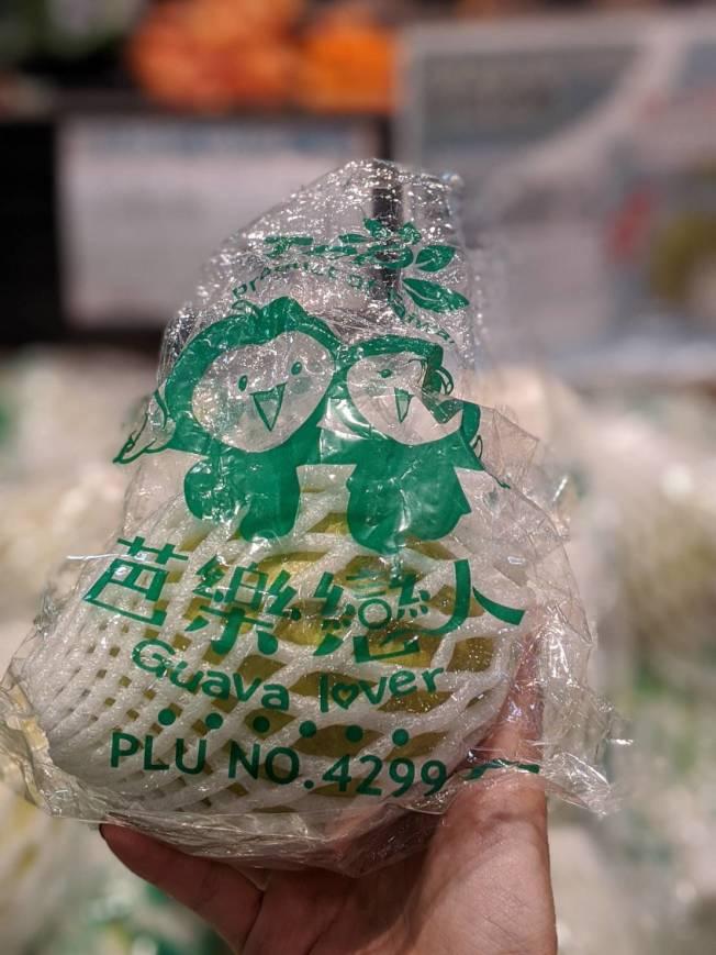 綠油油的芭樂,讓人食指大動。(記者蕭永群/攝影)