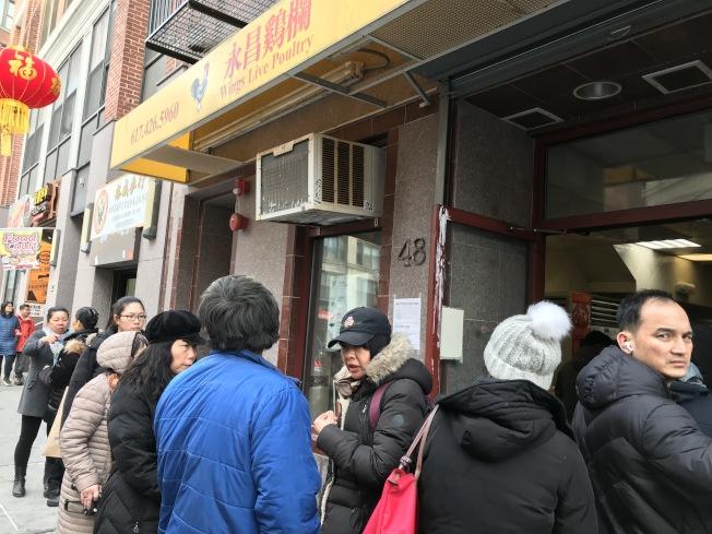 華埠的鮮雞專買店、華人超級市場的新鮮雞隻,近期特別暢銷。(記者薛劍童/攝影)