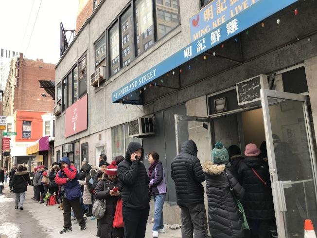 華埠兩間鮮雞專買店:明記鮮雞店和永昌雞鋪的門前,從早到晚,則排列成長龍隊伍等候買雞。(記者薛劍童/攝影)