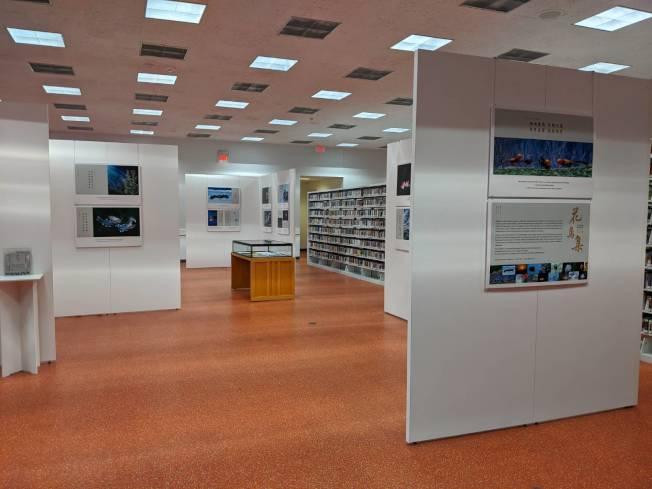 展覽於休士頓圖書館一樓舉行。(記者蕭永群/攝影)