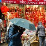 華埠年味濃 中餐館火爆 金鼠紅包脫銷