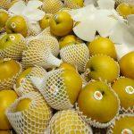 老年人冬天咳嗽咳不停?推薦吃這水果有助止咳化痰