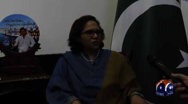 巴基斯坦駐中國大使哈什米。(視頻截圖)