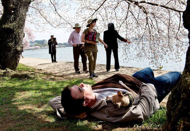 午睡是否有延年益壽之效,專家看法不一。 (Getty Images)