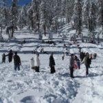 查爾斯敦山玩雪 森林協會籲警覺