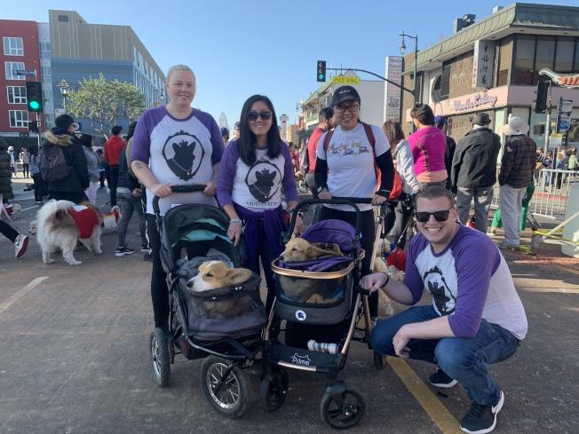 來自寵物救助機構「Queen's Best Stumpy Dog Rescue」的Susan Lung(左二),與好友、同事們,推著罹患椎間盤病的救助犬Coner和Chloe參與毛孩健行活動,傳播愛犬意識。(記者高梓原/攝影)