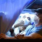 美衛生官員:鑽石公主號40名美國人感染新冠肺炎