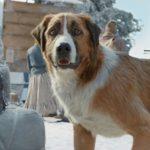 77歲福伯極地冒險 虛擬犬守護