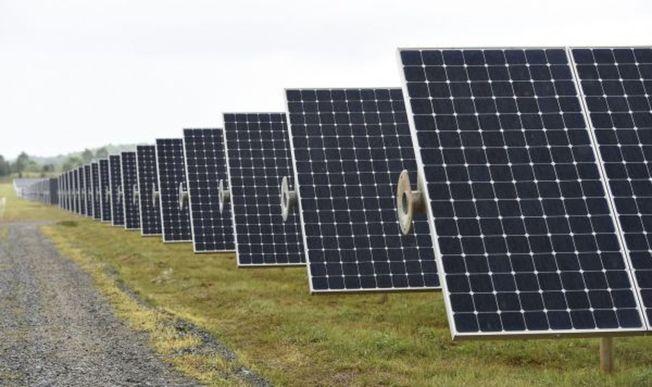 北卡羅來納州梅登的一處太陽能電池陣。(新華社)
