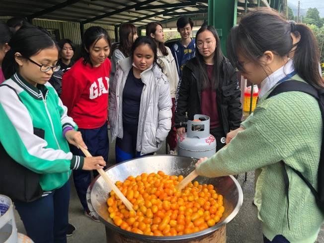 宜蘭縣政府農業處在金棗產季期間,推出「尋棗宜蘭」遊程,製作傳統金棗蜜餞DIY。(圖:吳楊欽提供)