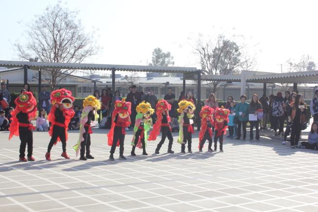 富樂頓中文學校日前舉行2020年慶祝中國新年活動,學生們穿上節日的盛裝,在老師的帶領下,粉墨登場。圖為可愛的幼獅團。(富樂頓中文學校提供)