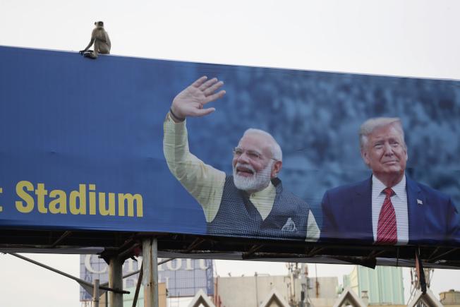 川普總統24日與25日兩天訪問印度。圖為一隻猴子坐在印度總理莫迪歡迎川普的海報掛板上。(美聯社)