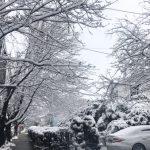 又是暖冬 波士頓均溫或為史上第5高