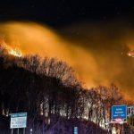 新州森林大火 防澳洲悲劇重現