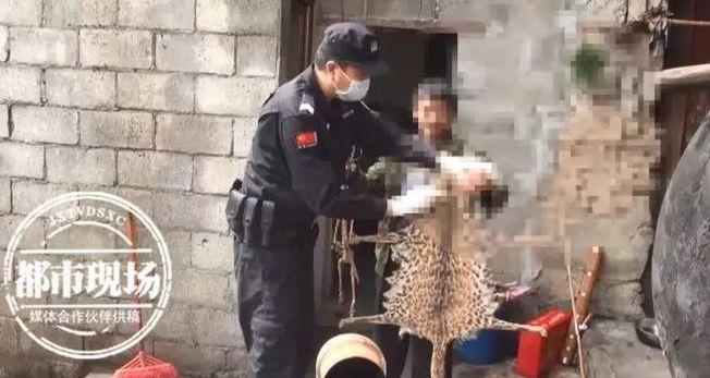 警方在王女家中查獲的疑似豹貓皮。(取材自都市現場)