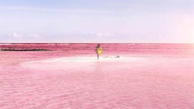粉紅湖 (Las Coloradas) 在沒風的日子可以倒影出像天空之鏡一樣;卻泛粉紅色的景象。
