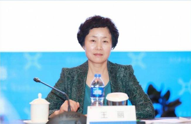 王麗涉嫌貪汙、受賄、挪用公款遭逮捕。(取材自南方都市報)