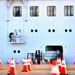 澳洲也傳新冠死亡首例  鑽石公主號旅客 夫亡妻病