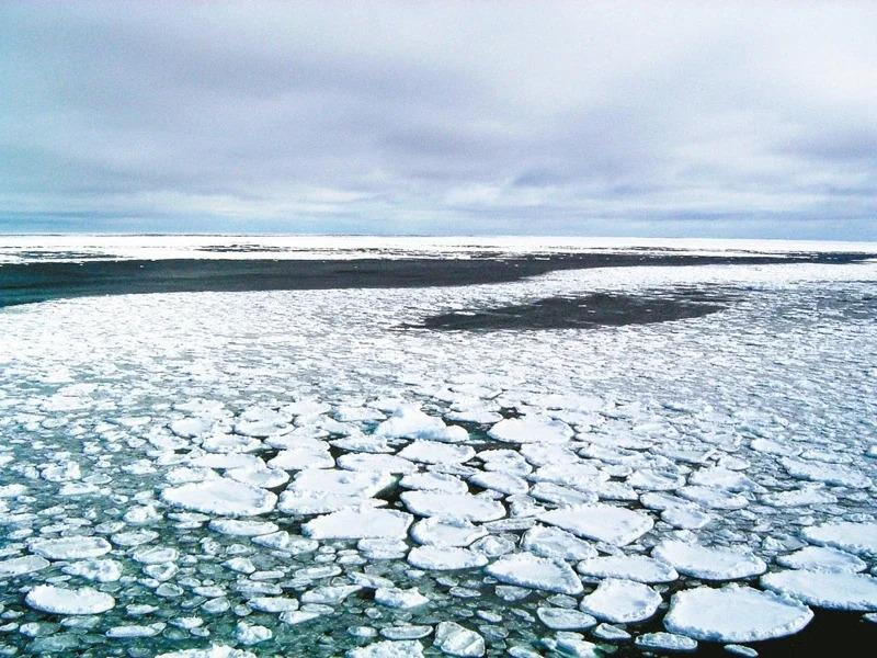 現在除南極洲外,全球有6大洲染疫。世界衛生組織警告,有些國家「尚未準備好」因應。圖為南極洲羅斯海海面的浮冰。美聯社