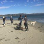 攜犬同遊北加博德加灣 啖海鮮