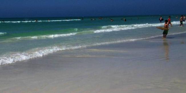 全美最佳海灘第一名Siesta Beach。(取自TripAdvisor網頁)