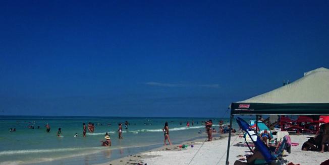 全美最佳海灘Siesta Beach。(取自TripAdvisor網頁)