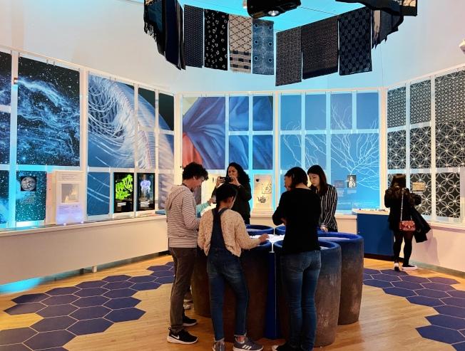 「藍色顏料大廳」幫助觀眾了解人類從自然中提取天然色的歷史。(記者鄭怡嫣/攝影)