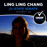 橙縣3共和黨亞裔女將晉決選 有望當選