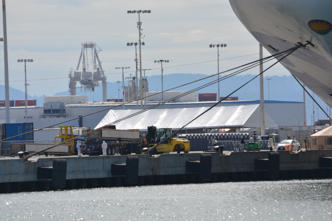 碼頭上搭建了臨時帳篷。郵輪停靠時,有身穿防護服的工作人員正在現場準備。(記者劉先進/攝影)