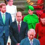 最後一次代表王室 哈梅人氣不減