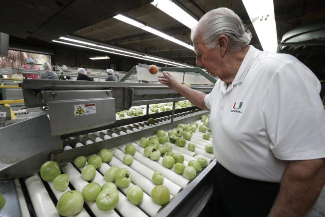 佛羅里達州議會12日通過法案,要求雇主必須利用聯邦電子核查系統(E-Verify),對新聘員工的移民身分進行核查。圖為佛州主要番茄種植商迪梅爾表示,E-Verify將加重招工困難。(美聯社)