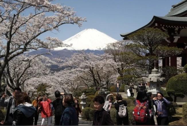 大和總合研究所預測,新冠肺炎疫情將影響日本到6月為止。歐新社