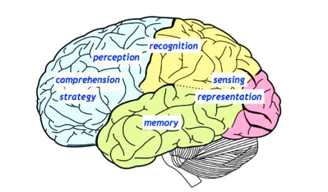圖策智能以模仿全腦功能漸立下一代人工智慧。(Graphen官網)