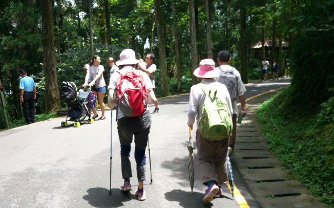 保養膝關節的運動推薦散步,登山是較不推薦的活動。(本報資料照片)
