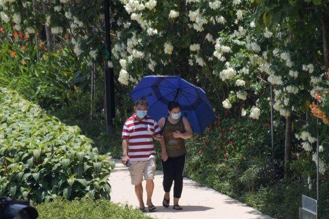 新加坡確診數攀高,圖為24日路上戴著口罩的民眾。(Getty Images)