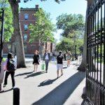 哈佛放榜了 錄取率4.92%  亞裔生24.5%