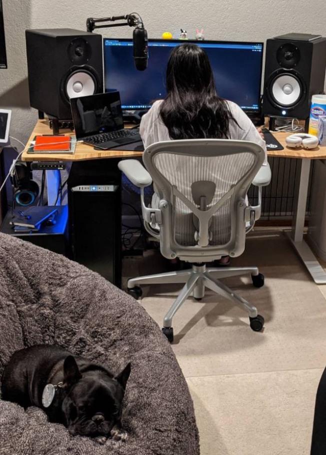 Google硬體工程師劉亮語的寵物狗會陪著她一起在家上班,不過狗狗好像也能體會到人類的情緒,最近情緒也比以前緊繃不少。(照片/劉亮語提供)
